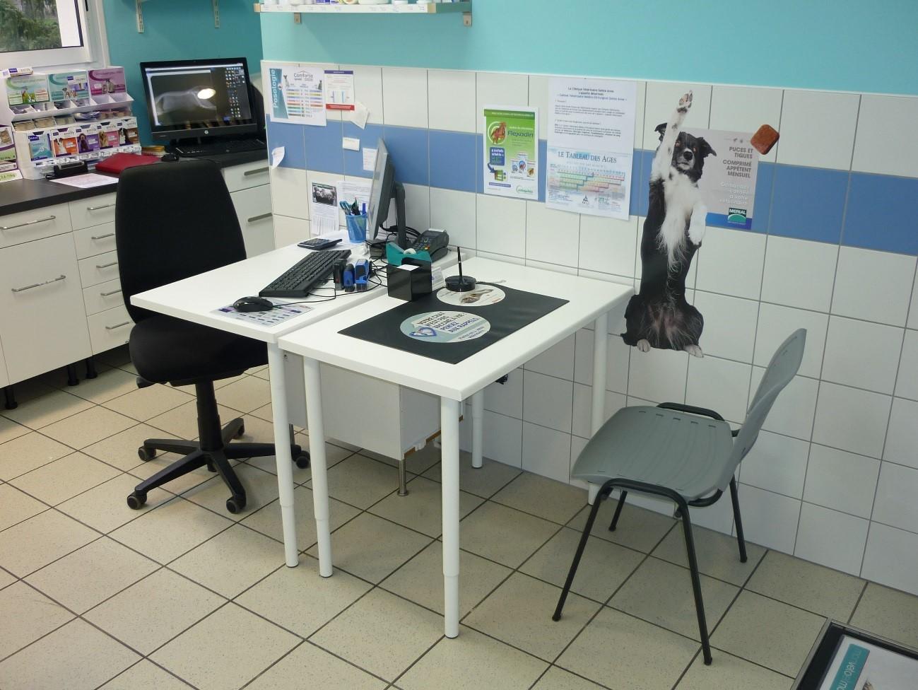 consultation vétérinaire pontivy