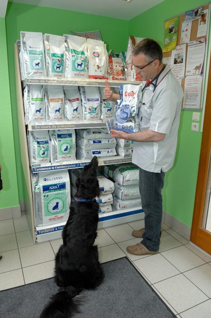 salle d'attente vétérinaire pontivy